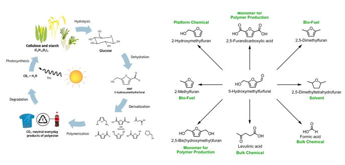 Renewable Chemicals - CSC